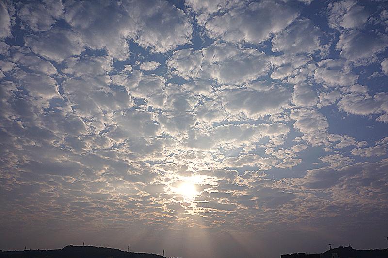 sky130124angel